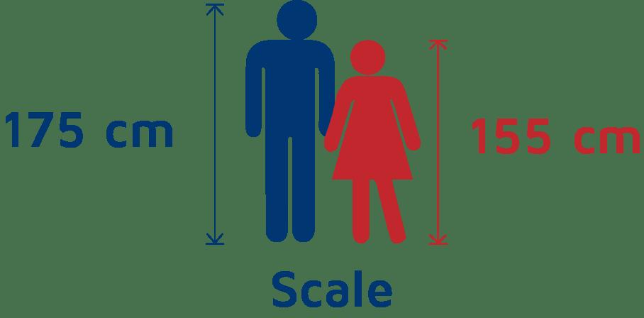 Mattress Scale